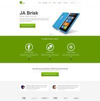 ja-brisk33